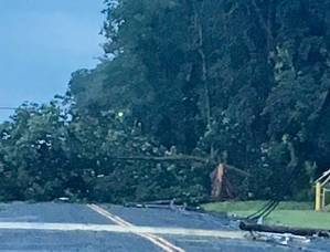 Downed Wires and Trees Close Hillcrest Road in Warren, Cancel Activities at WHRHS