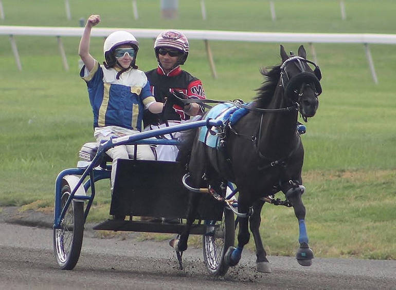 Harness Horse Youth Foundation To Hold Summer Programs Locally