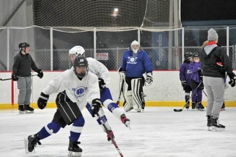 BethhornsteinhockeyPic2.JPG