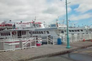New Jersey's Fishing Industry Found Lifeline in Coronavirus Relief Aid