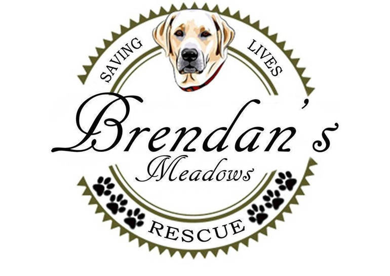 Brendan's Meadows Rescue logo.png