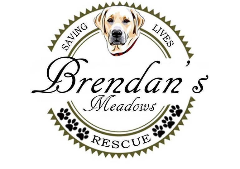 Brendan's Meadows Rescue logo.png