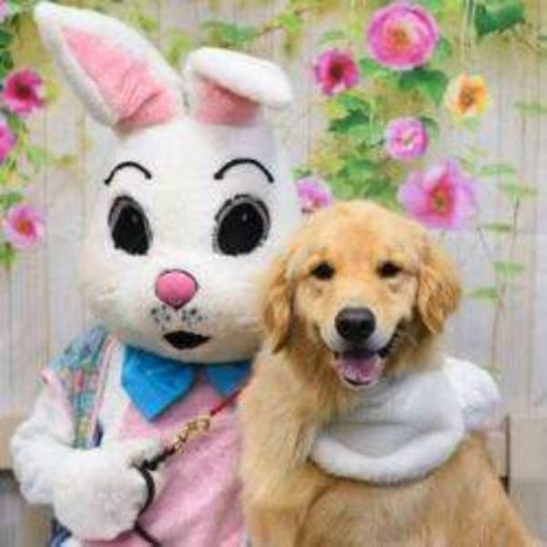SOME BUNNY is Coming to Green Leaf Pet Resort - all pets welcome! APRIL 5TH