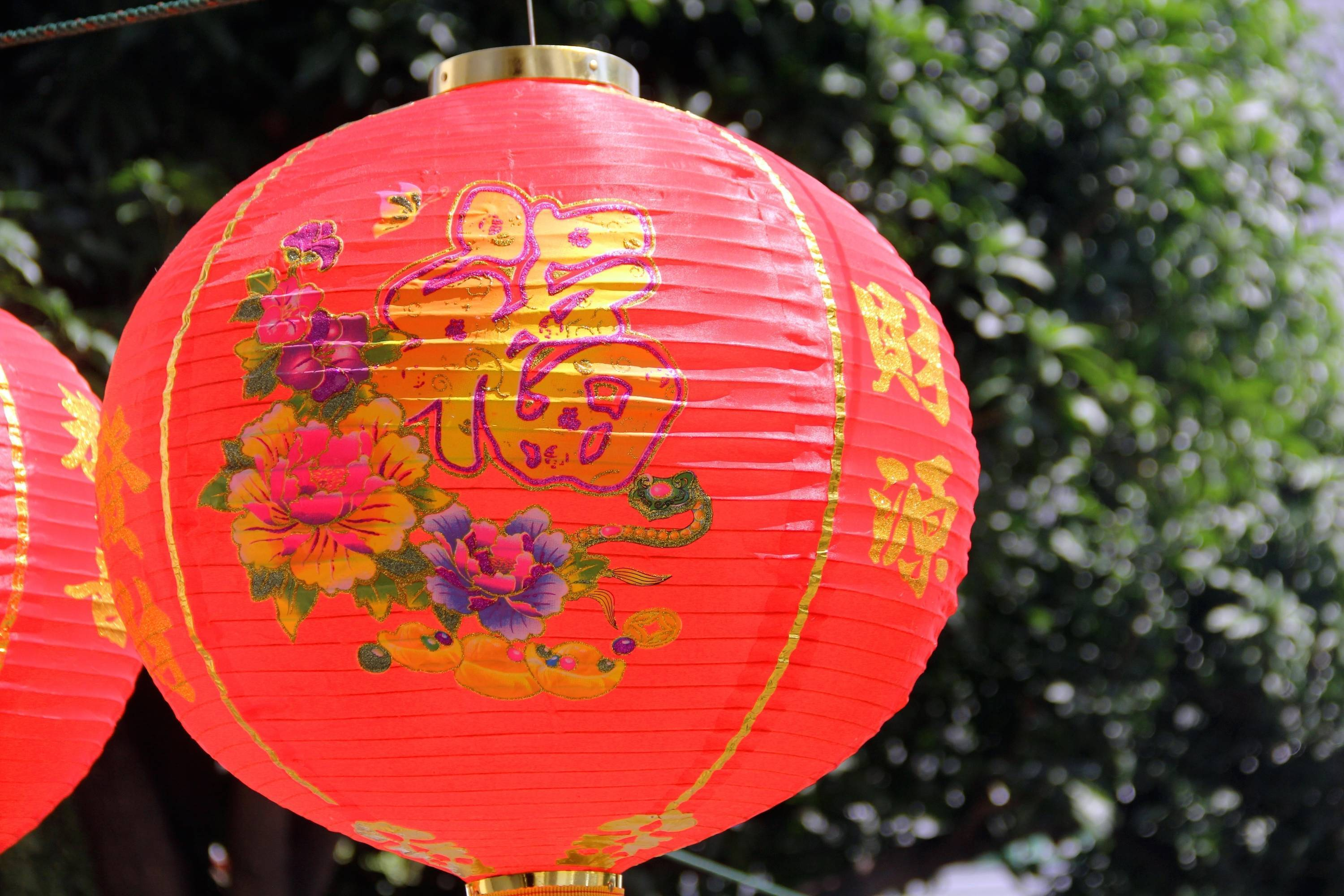 Celebrate the Chinese New Year with the Hasbrouck Heights Friends of the Library
