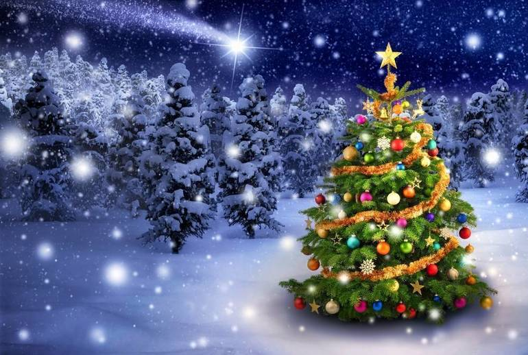 Get Your Christmas Tree from Morris Township's Hillside Hose Fire Department