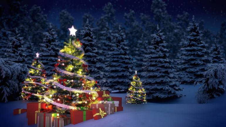 Reminder: Elizabeth Fifth Ward Tree Lighting Set for Wednesday Night