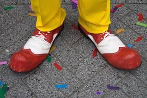 Carousel image 58d240d9e914853b038f mini magick20180929 7226 1j8hbb2
