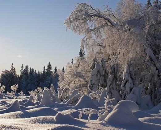 WinterWeather
