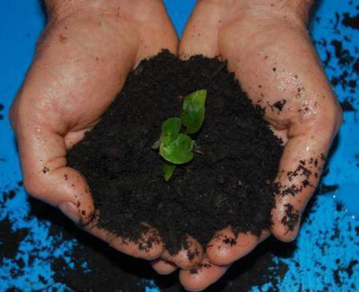 Compost via US EPA.jpg