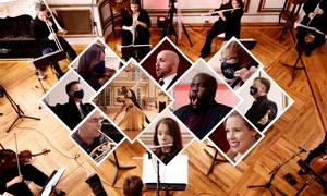 NJ Festival Orchestra