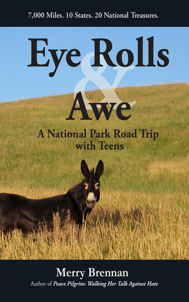 Road Trip Memoir by NJ Author Promotes Time with Teens, Country