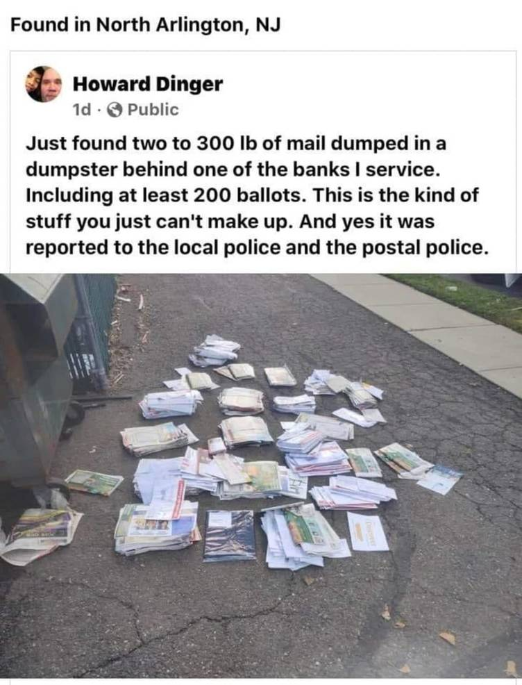 dumpstermailw_ofederalist.jpeg