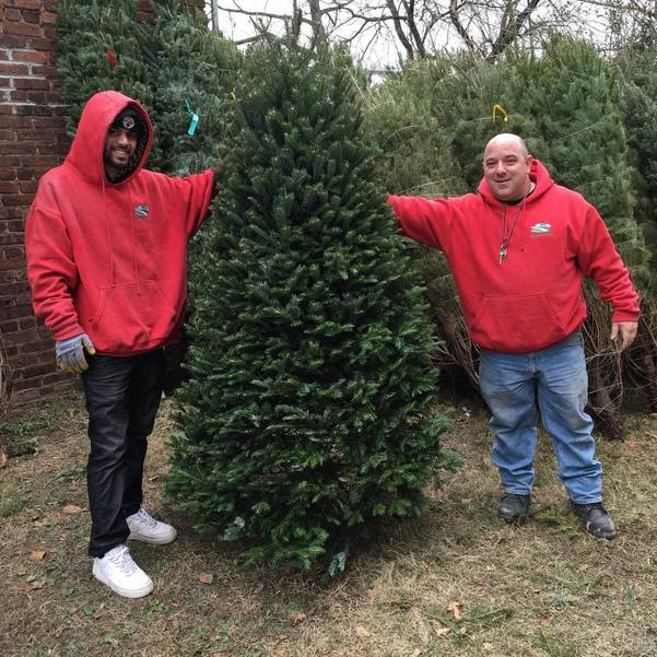 Santa's Elves Tipped Us Off - The First Christmas Trees Arrived at Franklin Farms in Nutley