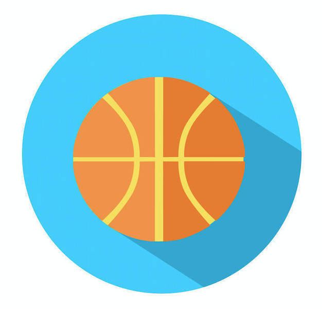 Madison Sports Roundup: Girls and Boys Basketball and Boys Ice Hockey