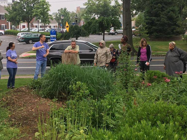 Environmental Steward trainees tour a rain garden..jpg