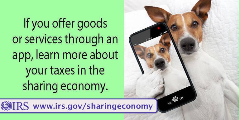 EstimatedTaxes-DogSelfie sharingeconomy.jpg