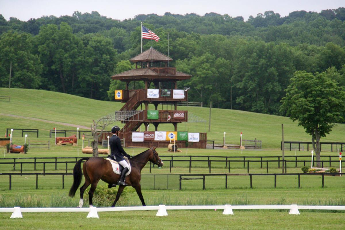essexhorse trials dressage021.jpg