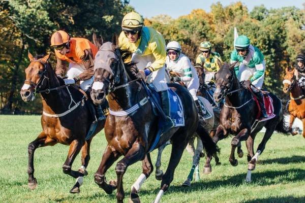 Far Hills Races
