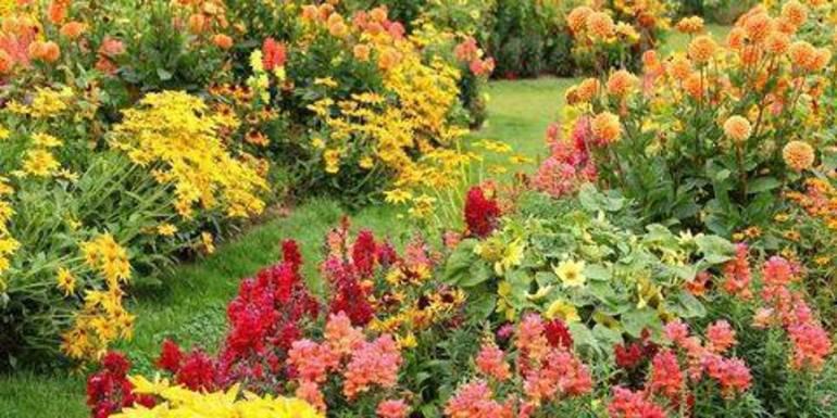 fall-garden House Beautiful.jpg