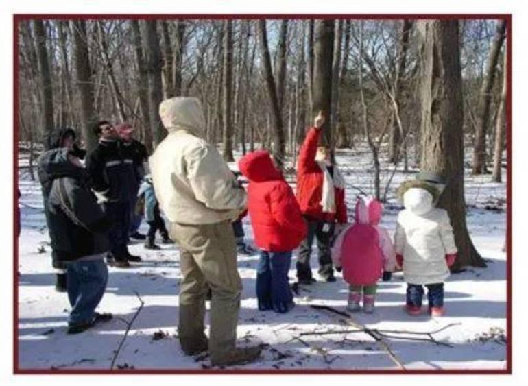 Family Nature Programs at Trailside.JPG