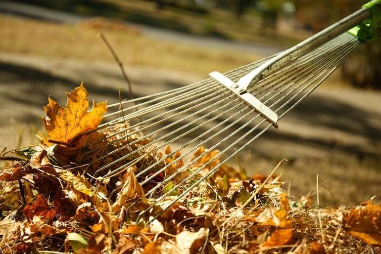 South Brunswick Township Leaf Collection Set