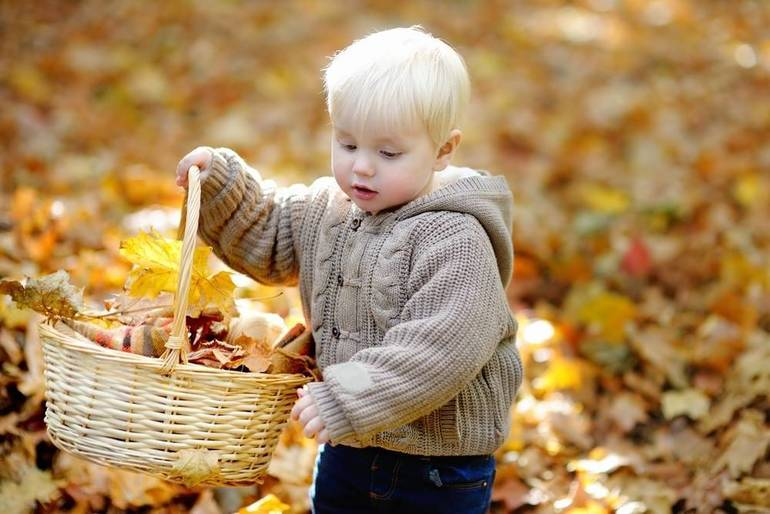 Fall Into Crafts with the Westfield Historical Society