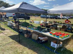 Parkland Farmers' Market Continues Sunday, April 11