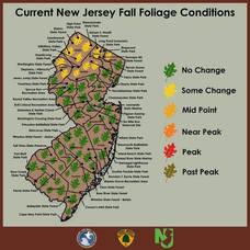 Carousel image 93023e7023e5f6ac0158 e3d7f9c687c256a183b4 fall foliage 2021 oct 3