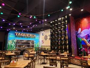 Carousel image fda809ced33e062e2d2b 292f962df7230b438335 fatcactus