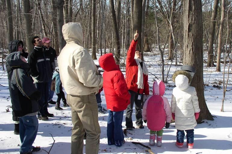 February Festivities (credit Union County).jpg