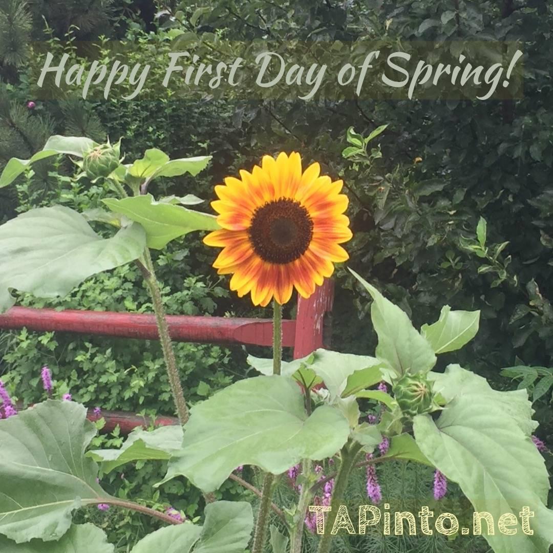 First Day of spring.JPG