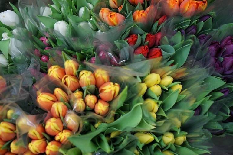 flowers38.jpg