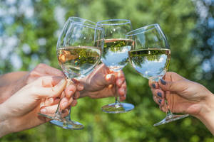 Four people cheering with glasses filled with wine