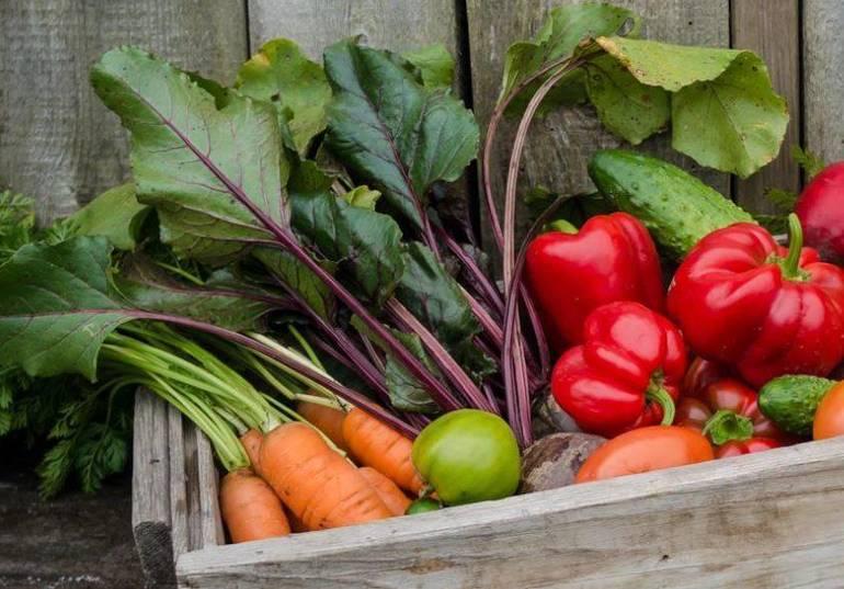 fresh vegetables (via USDA).JPG
