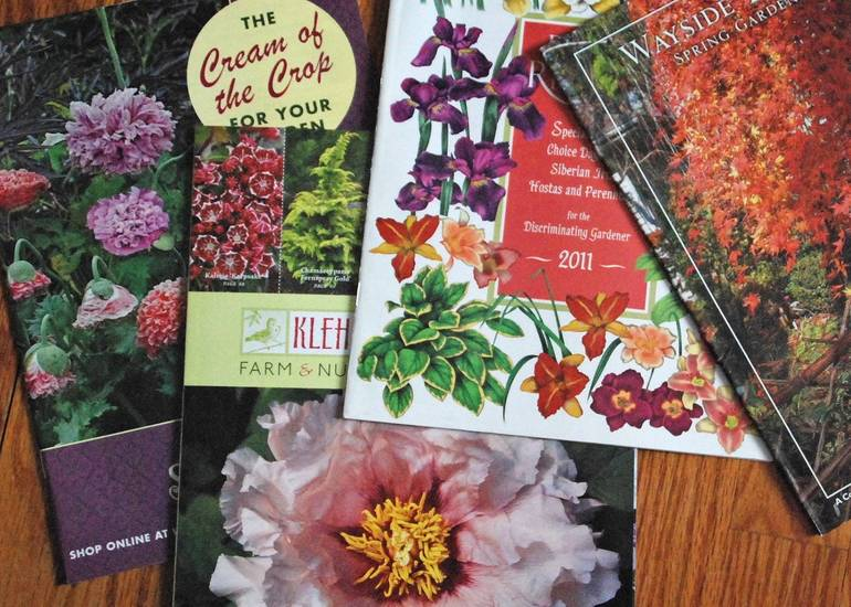 Garden Catalogs