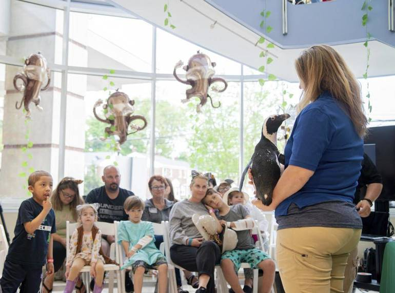 San Diego Zoo Kids Channel Begins Broadcasting At Morristown S