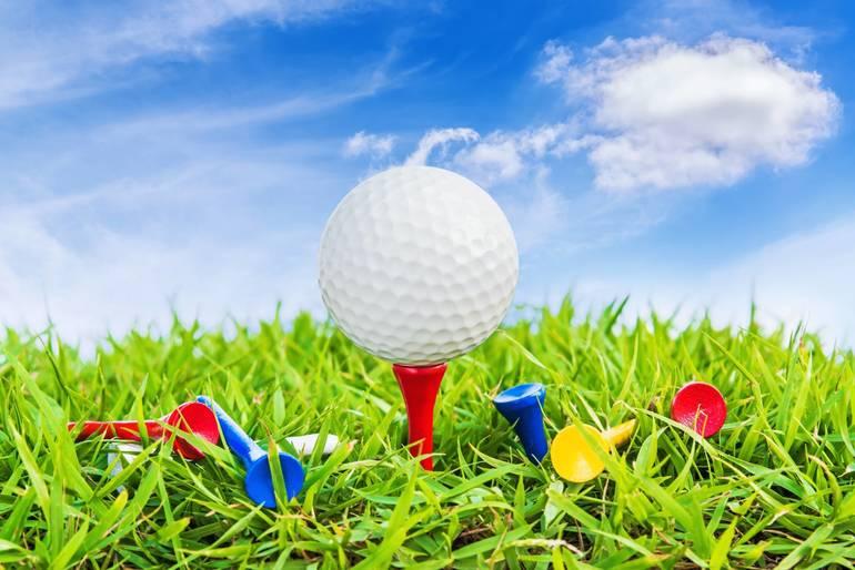Golf At the Wayne Public Library