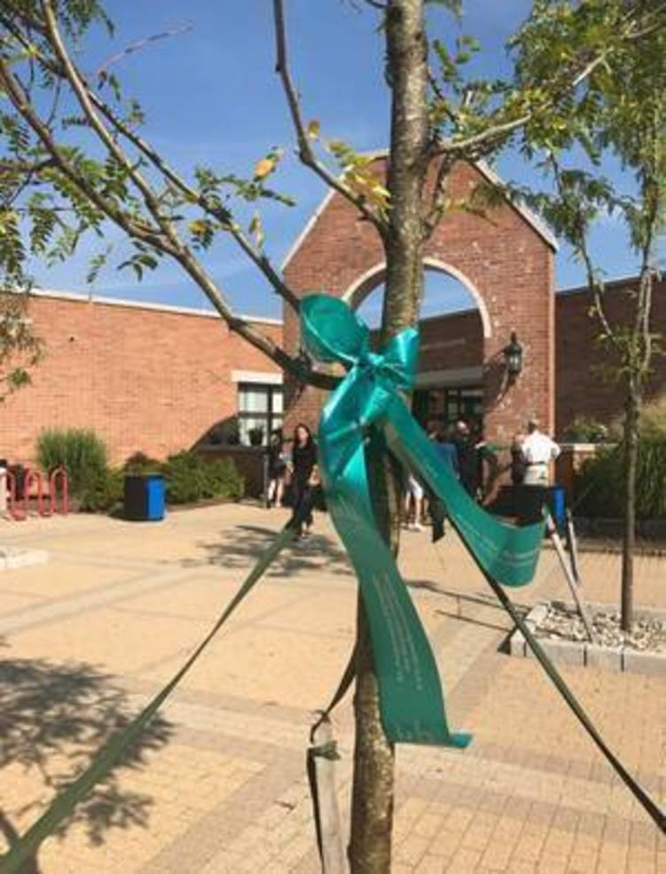 Teal Ribbons Help Hillsborough Observe National Ovarian Cancer Awareness Month