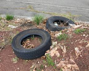 Somerset County Collects Used Tires at Hillsborough Facility