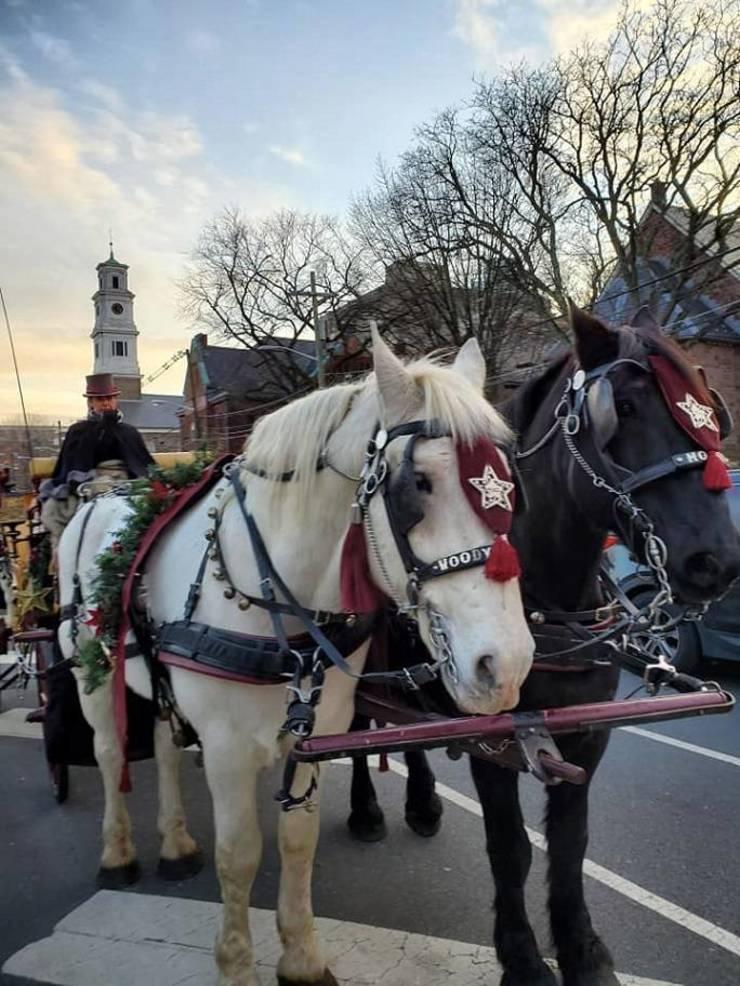 New Brunswick Winter Wonderland Festivities Start With Friday's Tree Lighting Ceremonies