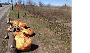 April 17 is South Plainfield Volunteer Litter Clean-Up Day