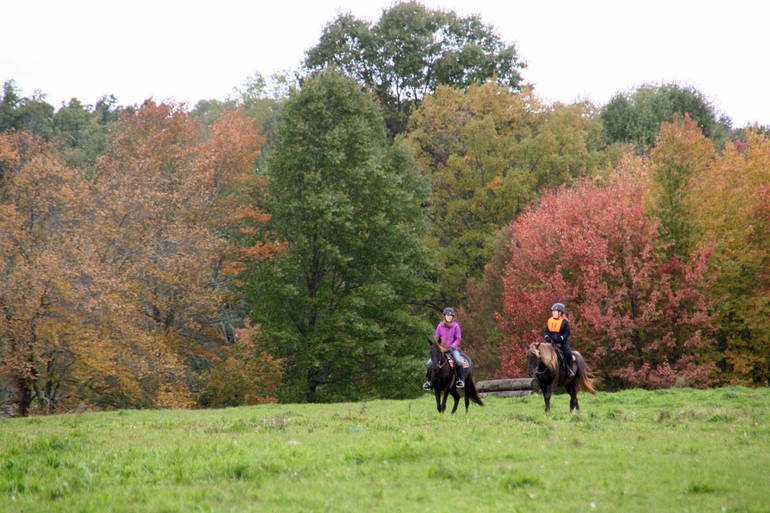 American Horse Council Lobbies For Bills That Would Help Trails