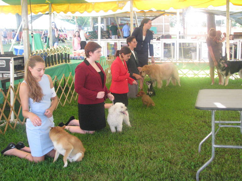 4-H Fair Dog Show
