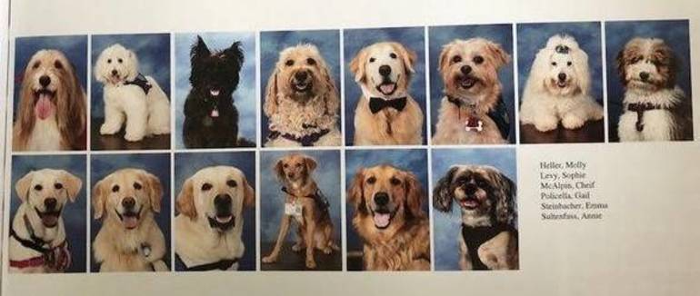 Therapy Dogs Recognized in 2019 Stoneman Douglas Yearbook