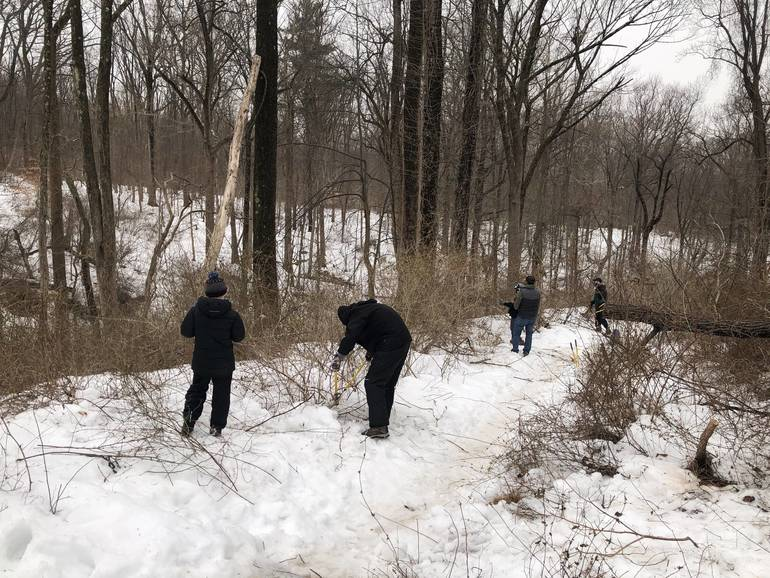 New Providence Boy Scout Troop 63 Prepares Bridle Trail for Union County Park Restoration