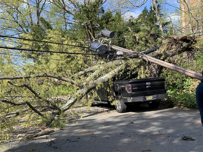 High Winds Knock Newstead Tree Onto Pickup Truck in South Orange