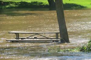 Ida Flood