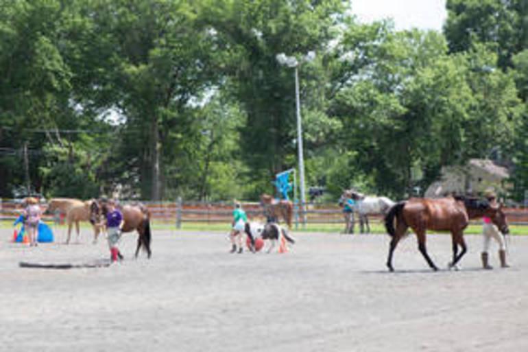 Somerset County 4-H Fair Returned to Bridgewater (Photo Gallery)