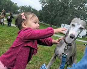 """Scenes from Passaic County's """"Paws in the Park"""" 2021 - Was Your Dog There?"""