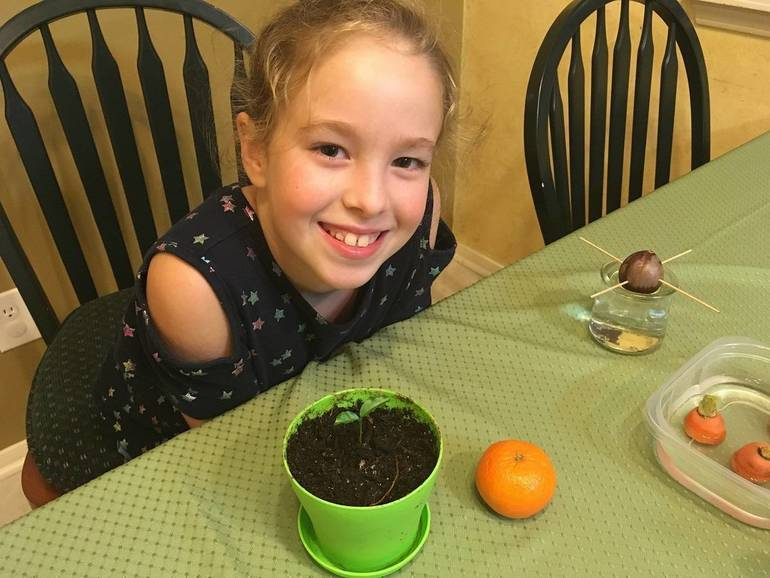 Abby Pounders of The Woodlands, Texas loves kitchen scrap gardening where kids of all ages get a kick out of growing from plant parts